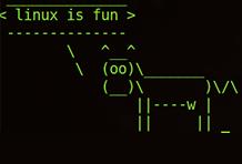 Linux常用命令,运维.jpg